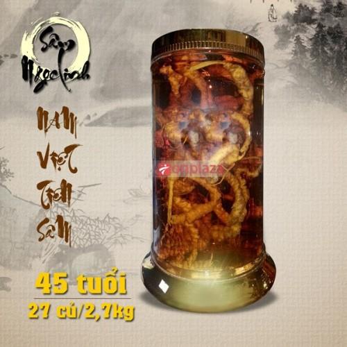 Bình sâm Ngọc Linh tươi 2,7kg 27 củ sâm NS188