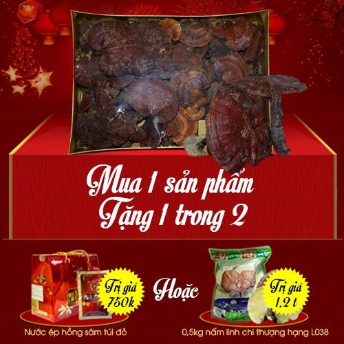 Nấm lim xanh Quảng Nam hộp quà biếu (1kg/hộp) L294