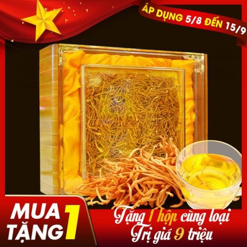 Nấm đông trùng hạ thảo khô cao cấp sản xuất tại Việt Nam hộp 500gr D207