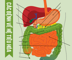 Các bệnh về đường tiêu hóa