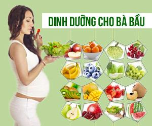 Dinh dưỡng cho bà bầu