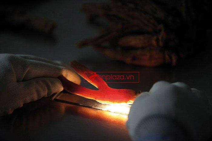 Hồng sâm củ khô cao cấp chính phủ KGC hộp thiếc 300g NS455 26
