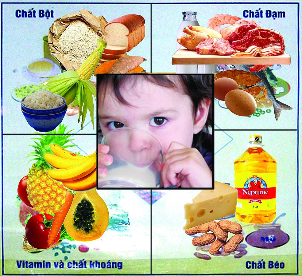 Bao nhiêu dinh dưỡng là đủ cho trẻ 2 tuổi muốn tăng cân