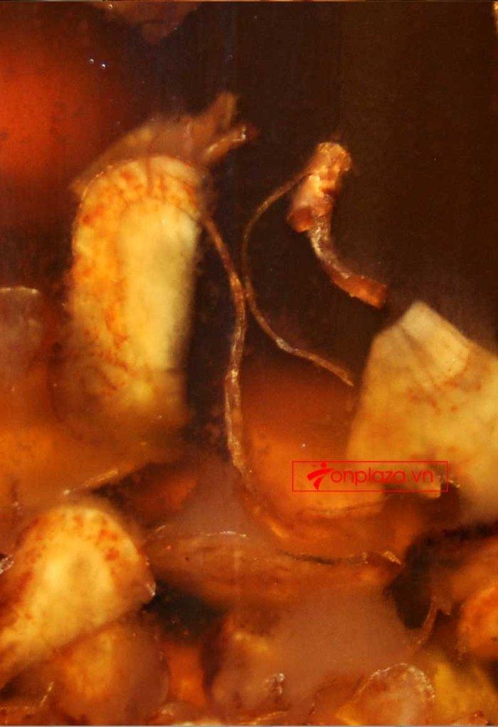 Bình ngâm sâm Ngọc Linh thái lát tẩm mật ong 6 lít loại 700gr sâm NS640 3
