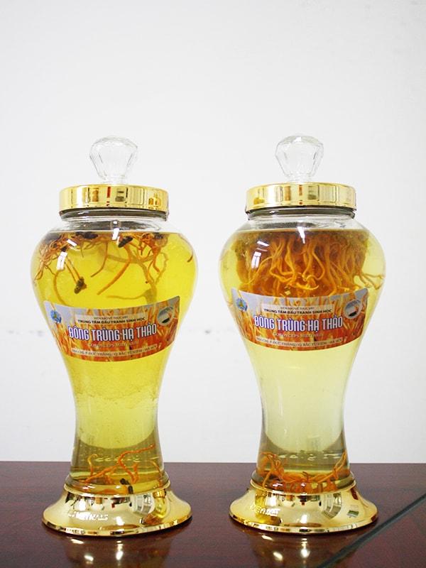 Bình rượu đông trùng hạ thảo quà tết ý nghĩa cho sếp nam