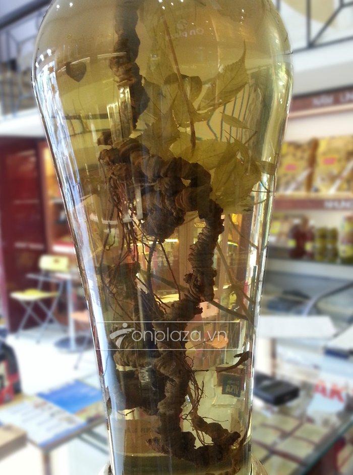 Bình sâm Ngọc Linh cao cấp tự nhiên loại 2,4 kg/củ NS301 2