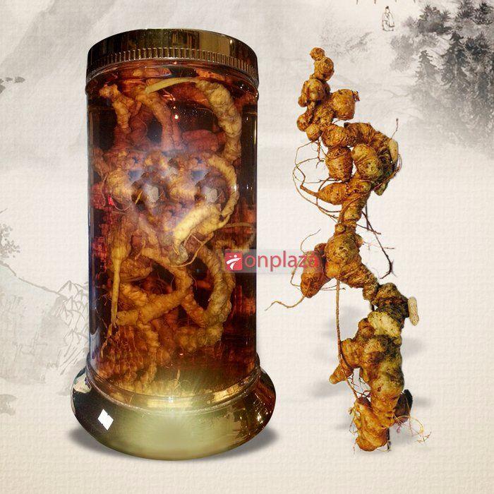 Bình sâm Ngọc Linh tươi 2,7kg 27 củ sâm NS188 1