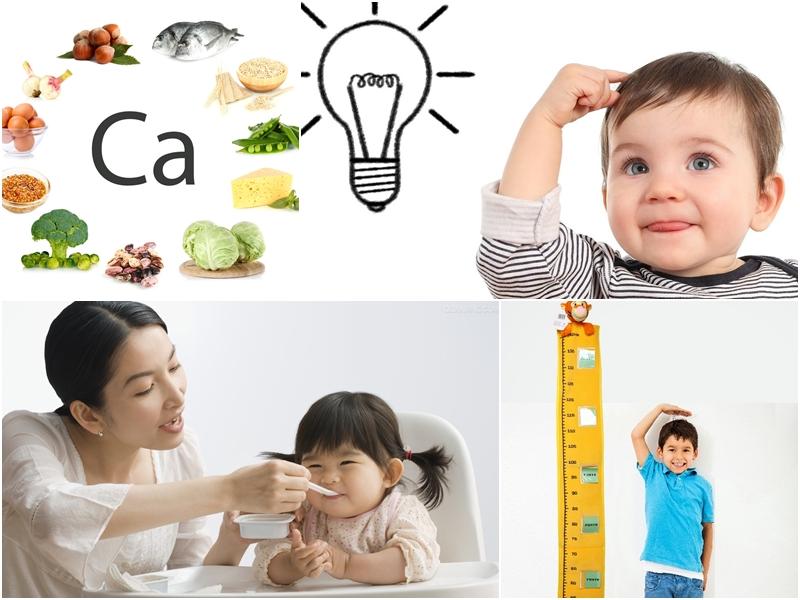 Nên cho trẻ ăn gì để bổ sung canxi đạt hiệu quả?