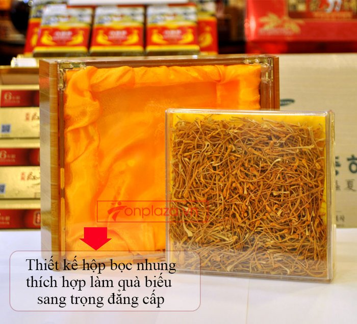 Đông trùng hạ thảo khô Việt Nam chất lượng cao hộp 250gr D206 2