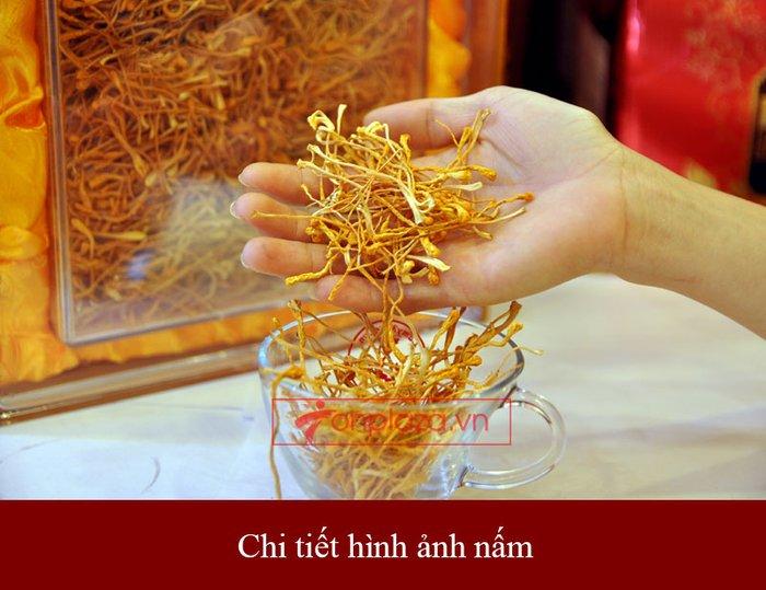 Đông trùng hạ thảo khô Việt Nam chất lượng cao hộp 250gr D206 3
