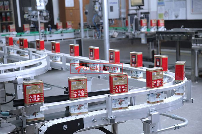 một số hình ảnh về quy trình sản xuất và đóng gói sp hồng sâm củ khô cao cấp chinh phu kgc hộp thiếc 5