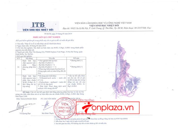 kết quả kiểm định sâm ngọc linh thật giả của onplaza Việt Pháp 2