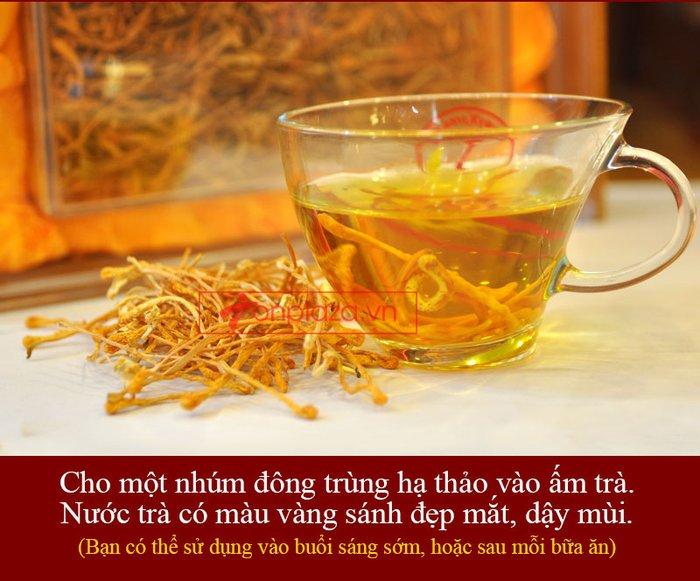 Nấm đông trùng hạ thảo khô cao cấp sản xuất tại Việt Nam hộp 500gr D207 4