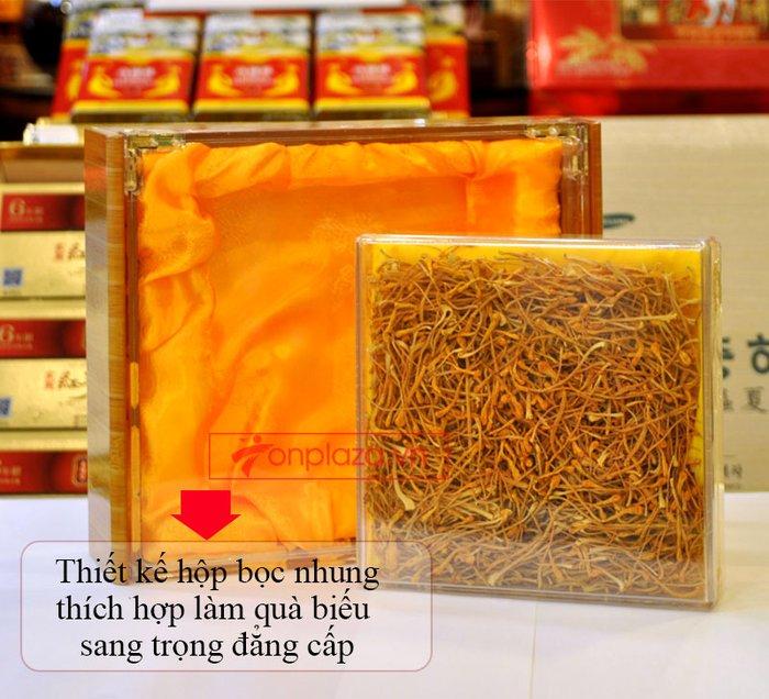 Nấm đông trùng hạ thảo Việt Nam sấy khô cao cấp hộp 100gr D205 3