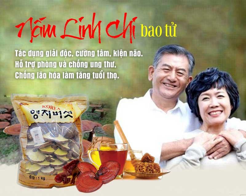 Nấm linh chi bào tử thượng hạng Hàn Quốc L045 1