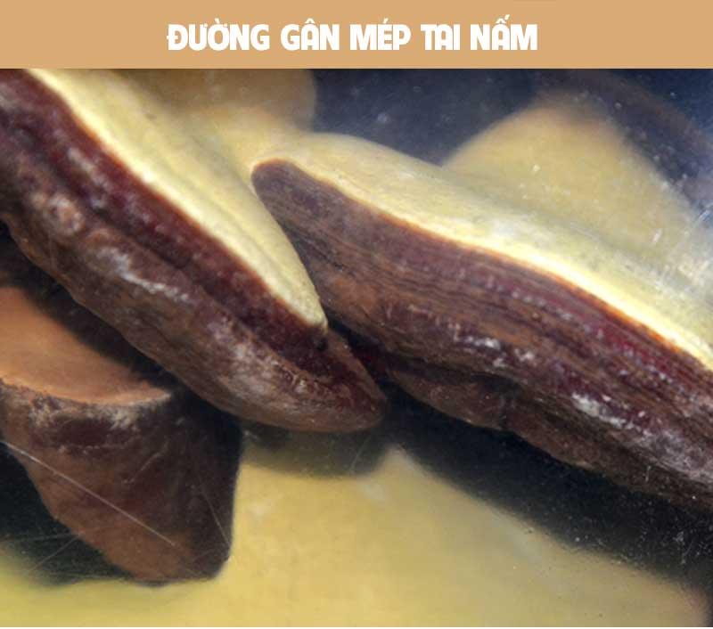 Nấm linh chi bào tử thượng hạng Hàn Quốc L045 7