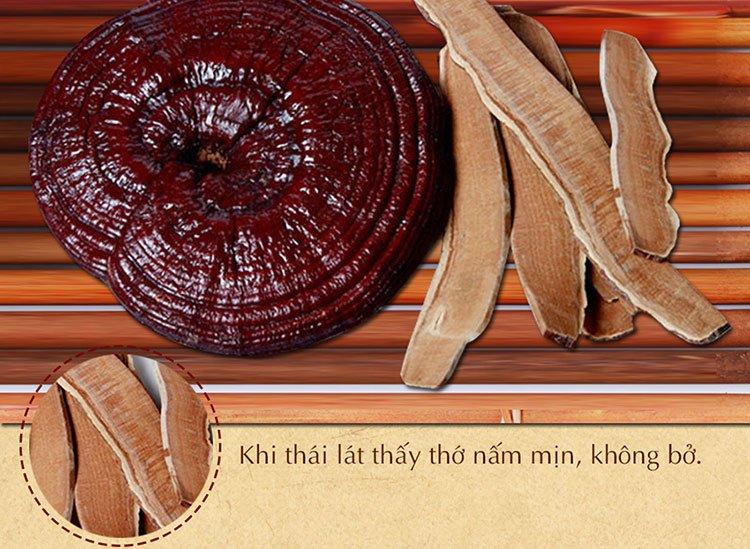Nấm linh chi đỏ thượng hạng Hàn Quốc L048 9