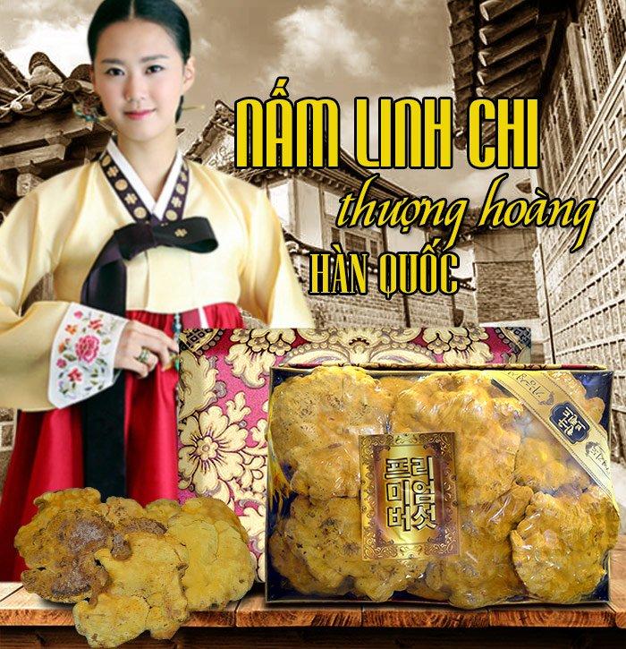 Nấm Linh Chi Thượng Hoàng ( 0.5kg/1 Hộp) L022 1