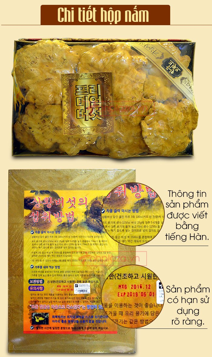 Nấm Linh Chi Thượng Hoàng ( 0.5kg/1 Hộp) L022 5