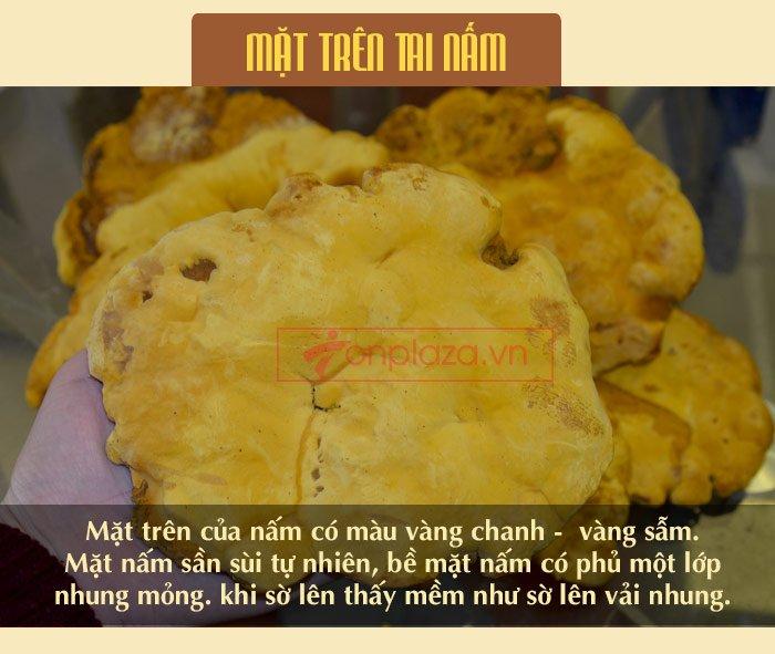 Nấm Linh Chi Thượng Hoàng ( 0.5kg/1 Hộp) L022 8