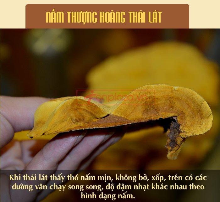 Nấm Linh Chi Thượng Hoàng ( 0.5kg/1 Hộp) L022 12