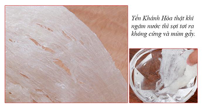 Yến nguyên tổ Khánh Hòa hộp 100g TP1 10