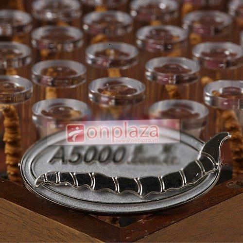 Dong-trung-ha-thao-3800-48-con-500-3