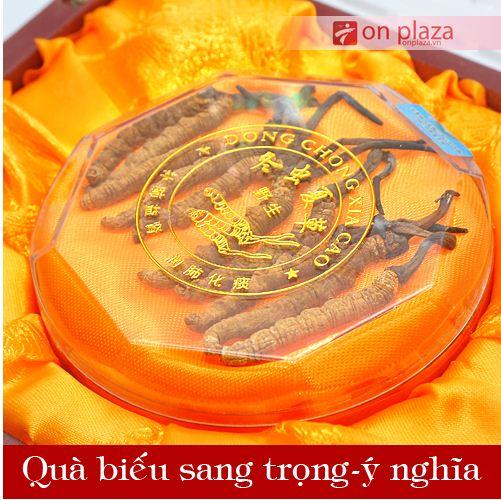 dong-trung-ha-thao-nguyen-con-loai-dac-biet-cao-cap-5g-3