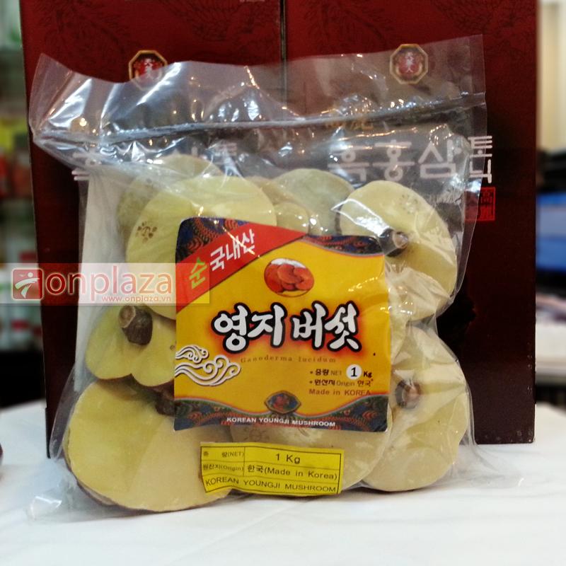 Nấm linh chi vàng Hàn Quốc loại Thượng hạng