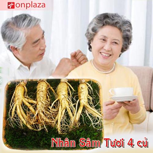 nhan-sam-4-cu