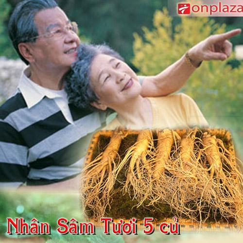 Sâm tươi Hàn Quốc loại 5 củ/kg