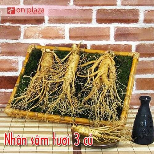 nhan-sam-tuoi-3-cu