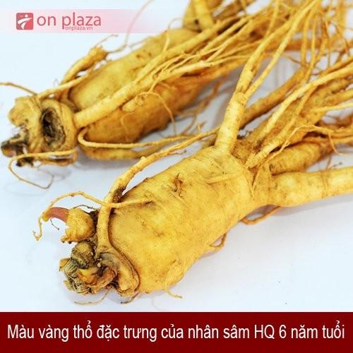 nhan-sam-tuoi-han-quoc-1